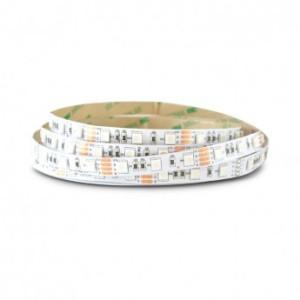 Bandeau LED RGB 5m 60 LED/m 72W IP20 VISION EL
