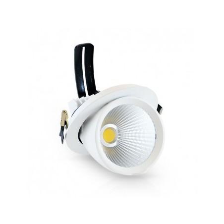 Spot LED escargot inclinable et orientable 10W 4000°K + alim. électronique VISION EL