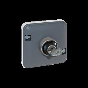Mécanisme interrupteur à clé - 2 positions - Gris EUR'OHM