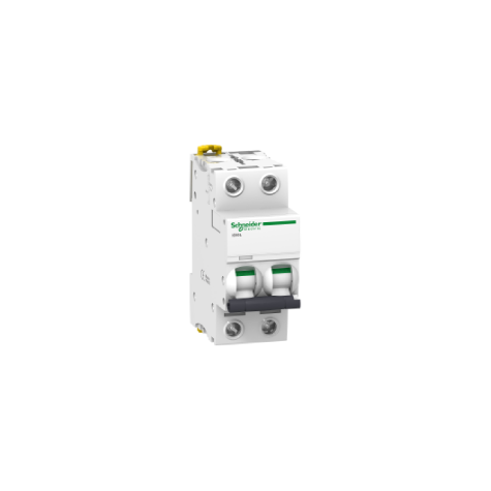 Disjoncteur Acti9 iC60L - 2P - 6A - courbe B SCHNEIDER