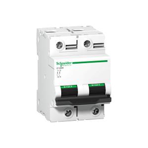 Disjoncteur C120N 2P 63 A, courbe C, 10 kA - A9N18360 SCHNEIDER