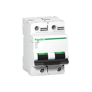 Disjoncteur C120H 2P 63 A, courbe D, 15 kA - A9N18500 SCHNEIDER